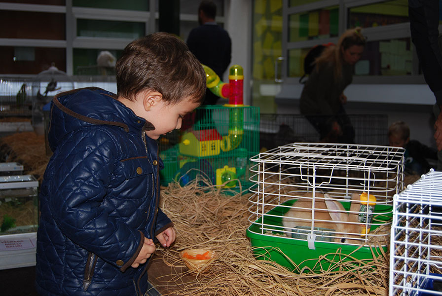 We hosted our animal friends at the I Grew Up Party